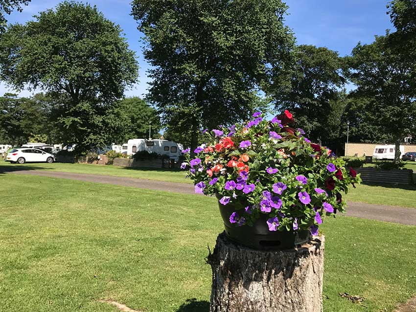 Trencreek Holiday Park Newquay