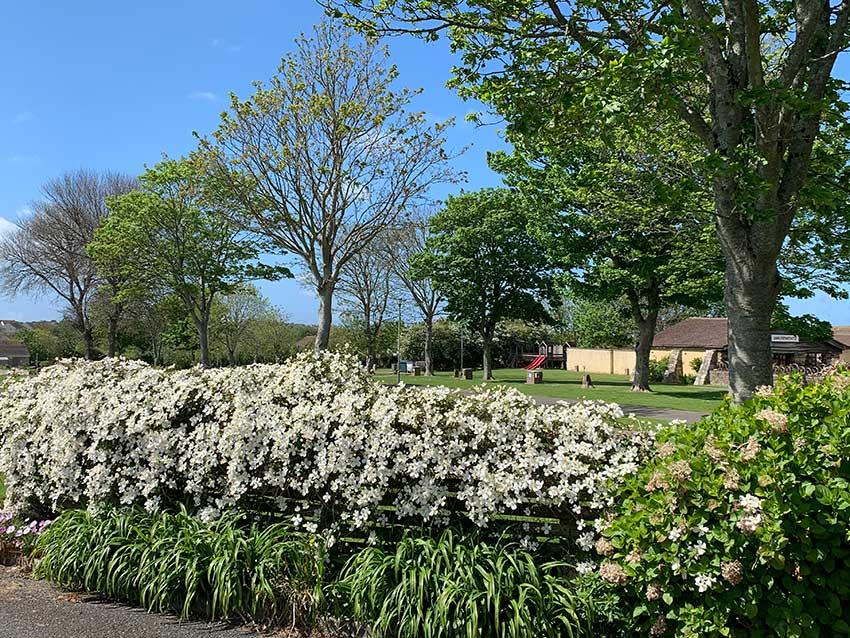 Gardens Trencreek Holiday Park Newquay